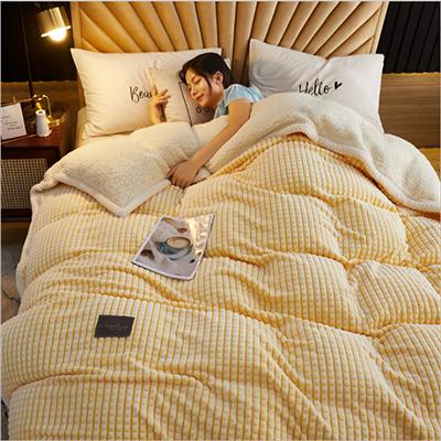 Exquisite Super Soft Flannel Silky Fluffy Warm Weighted Winter Blanket
